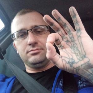 Дмитрий, 34 года, Тула