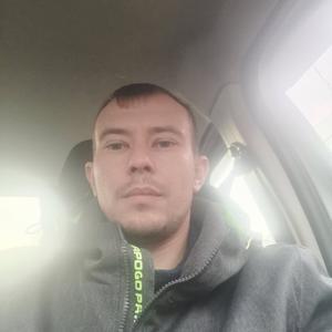 Андрей Соболев, 37 лет, Дубна