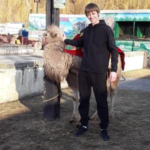 Роман, 31 год, Кисловодск