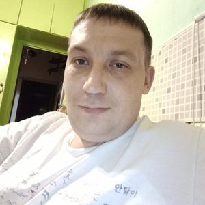 Александр Тимошин, 39 лет, Апатиты