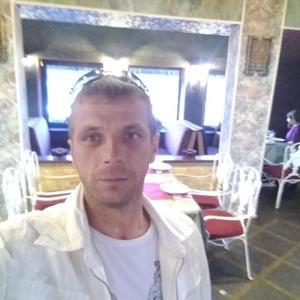 Дмитрий, 41 год, Артем