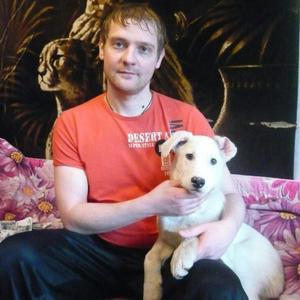 Дмитрий, 36 лет, Рыбинск