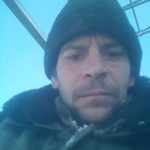Николай, 36 лет, Грязи