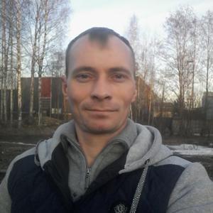 Александр, 41 год, Всеволожск