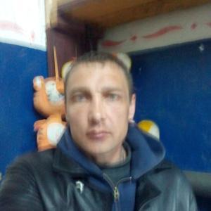 Александр, 39 лет, Себеж