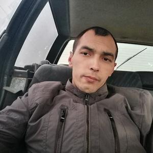 Андрей, 25 лет, Солнечногорск