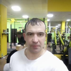 Андрей, 42 года, Сосновый Бор