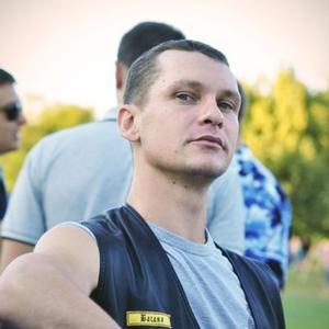 Александр, 37 лет, Киржач