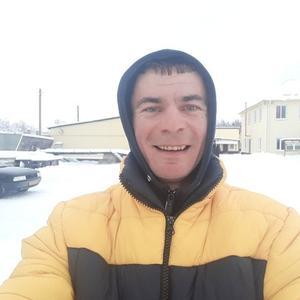 Макс, 35 лет, Новозыбков