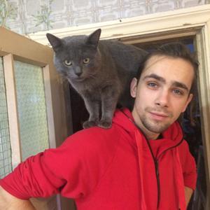 Димон, 29 лет, Тула