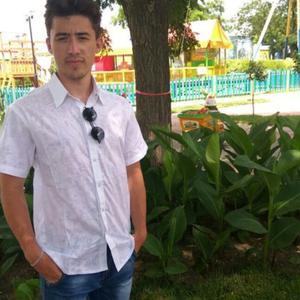Николай, 23 года, Курск