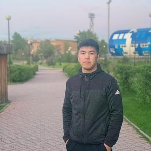 Шер, 25 лет, Красноярск