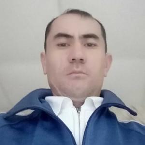 Шамил, 35 лет, Тобольск