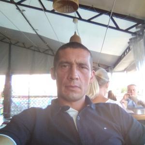 Василий, 40 лет, Сосновоборск