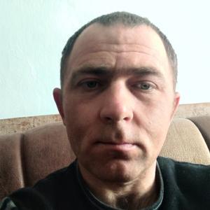 Тимур, 35 лет, Майкоп