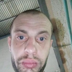 Голодный Извращениц, 30 лет, Щелково