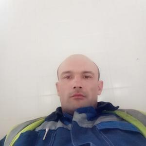 Алекс, 37 лет, Великий Устюг