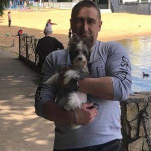 Вадим, 45 лет, Химки
