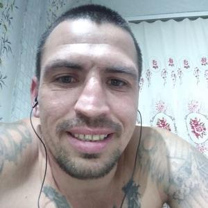 Тимофей, 36 лет, Туринск