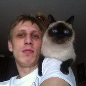Дима, 31 год, Суворов