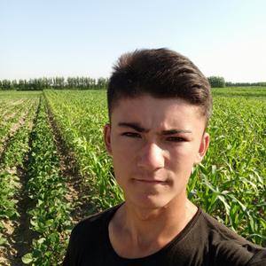Олимжон, 20 лет, Свободный