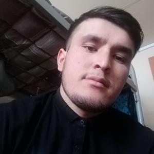 Шахзод, 26 лет, Абаза